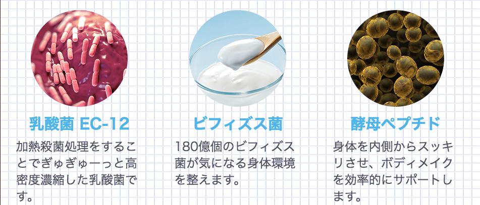 【公式】青汁と酵素のWパワー_『すっきり野菜の青汁酵素』