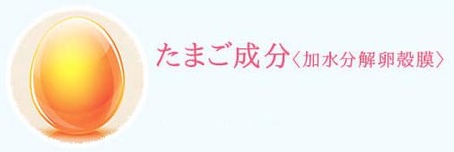 スクリーンショット_2018_01_12_16_04