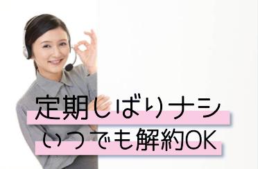 定期縛りナシ_pptx
