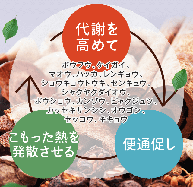 efficacy_02 2